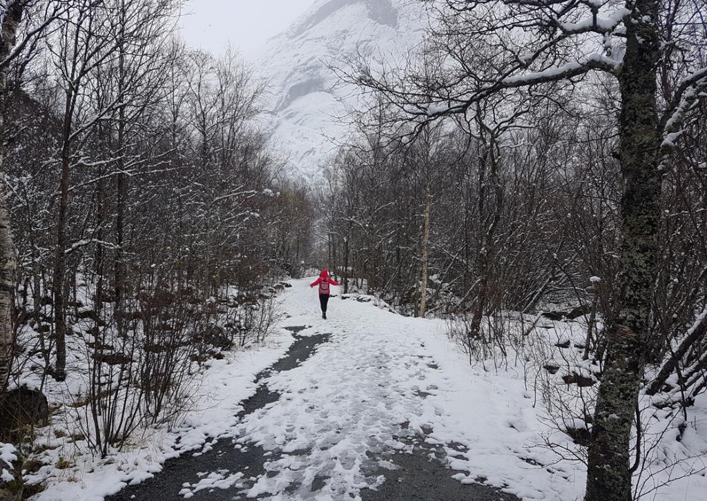 Ruta al Glaciar Briksdalbreen