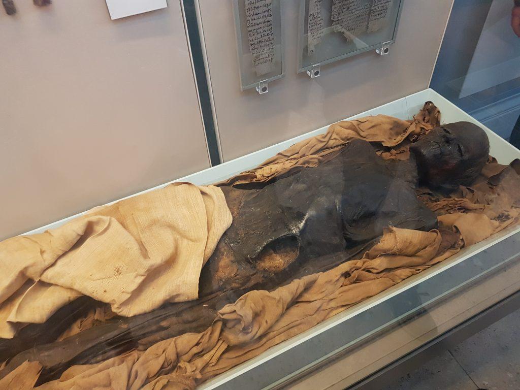 Momia British Museum
