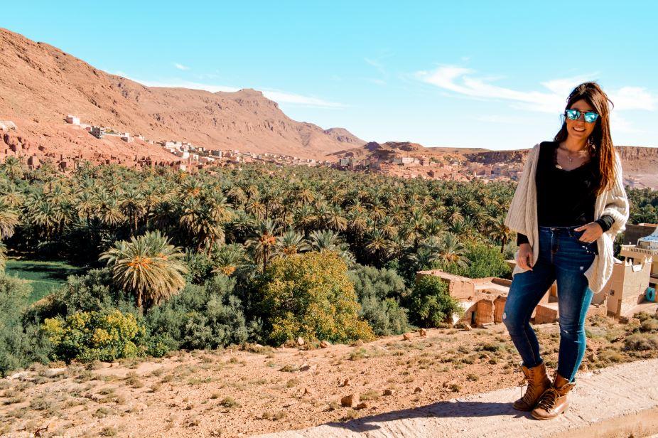 Palmeral Marruecos