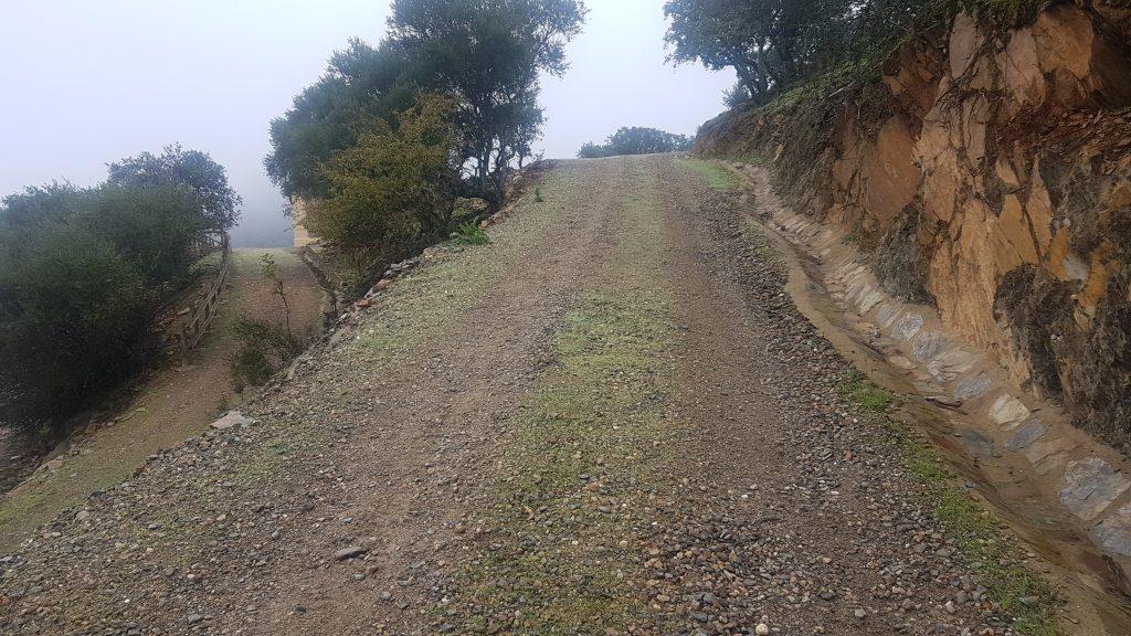 Ruta Monfrague