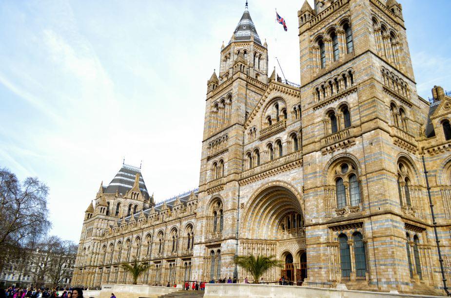 Museo de la Natutaleza Londres que ver