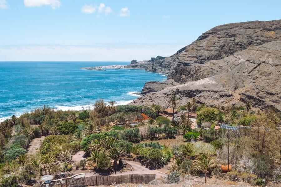 Barranco de Guayedra que ver en Gran Canarias campo de girasoles