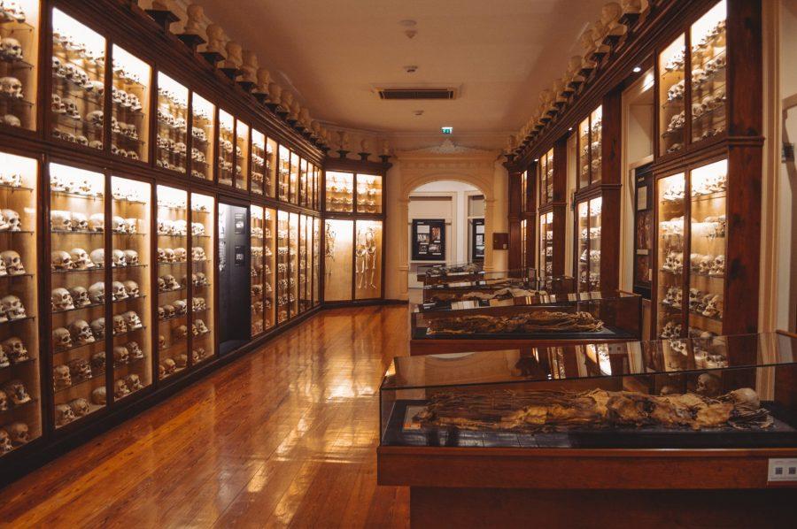 Museo Canario Que ver en Las Palmas de Gran Canaria